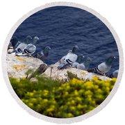 Racing Pigeons Round Beach Towel