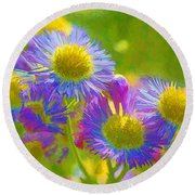 Rainbow Colored Weed Daisies Round Beach Towel