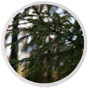Raindrops On The Spruce Twig Round Beach Towel