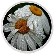 Rainy Day Daisies Round Beach Towel