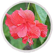 Rainy Day Hibiscus Round Beach Towel