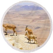 Ramon Crater Negev Israel Round Beach Towel