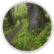 Ramsons By Path In Woods, County Louth Round Beach Towel