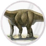 Rapetosaurus Krausei, A Prehistoric Era Round Beach Towel