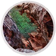 Red And Green Round Beach Towel by Rick Berk