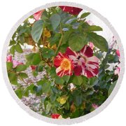 Red And White Roses 3 Round Beach Towel