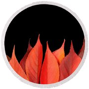 Red Autumn Leaves On Edge Round Beach Towel