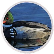 Red Breasted Merganser Round Beach Towel