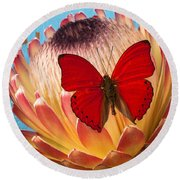 Red Butterfly On Protea Round Beach Towel
