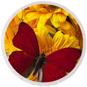 Red Butterfly On Yellow Gerbera Daisies  Round Beach Towel