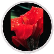 Red Canna With Raindrops Round Beach Towel