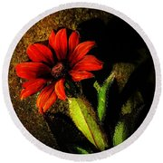 Red Coneflower Round Beach Towel