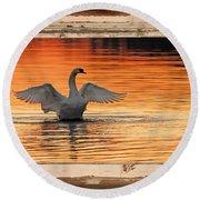 Red Dawn Swan Framed In Old Window Frame Round Beach Towel