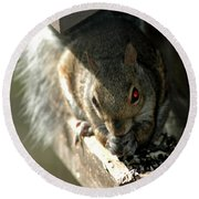 Red Eyed Demon Squirrel Round Beach Towel