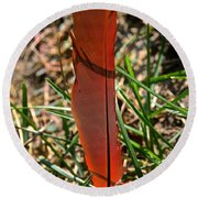 Red Feather Round Beach Towel
