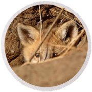 Red Fox Pup Peaking Out Of Den Round Beach Towel