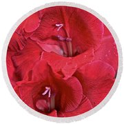 Red Gladiolus Round Beach Towel by Susan Herber