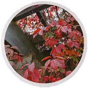 Red Grape Leaves And Beams Round Beach Towel