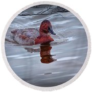 Red Headed Duck Round Beach Towel