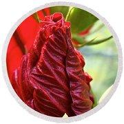 Red Hibiscus Torch Round Beach Towel