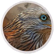 Red Kite - Featured In The Groups - Spectacular Artworks And Wildlife Round Beach Towel