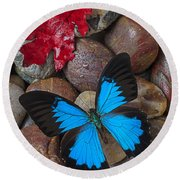 Red Leaf And Blue Butterfly Round Beach Towel