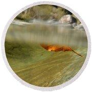 Red Leaf Floating Round Beach Towel