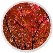 Red Leaves Black Branches Round Beach Towel