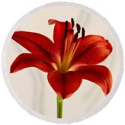 Red Lily Number Three Round Beach Towel
