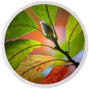 Red Magnolia Leaves With Bud Round Beach Towel