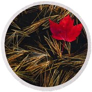 Red Maple Leaf On Pine Needles In Pool Round Beach Towel