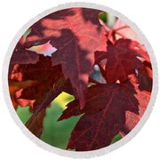 Red Maple Round Beach Towel
