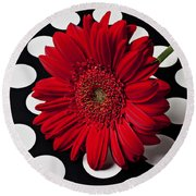Red Mum With White Spots Round Beach Towel by Garry Gay