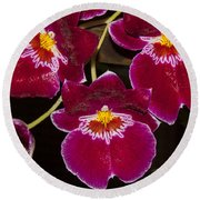 Red Orchids Round Beach Towel