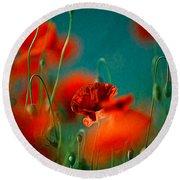 Red Poppy Flowers 05 Round Beach Towel