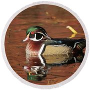 Red Reflection Of A Wood Duck Round Beach Towel