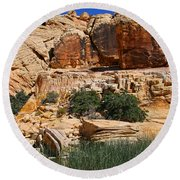 Red Rock Canyon The Tank Round Beach Towel