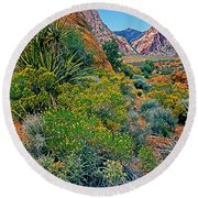 Red Rock Park Spring Flowers Round Beach Towel