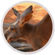 Red Roos Round Beach Towel