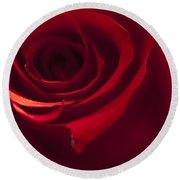 Red Rose Close Up Round Beach Towel