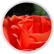 Red Rose Flower Bright Colorful Vivid Red Floral Rose Round Beach Towel