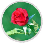 Red Rose With Star-shaped Collar Round Beach Towel