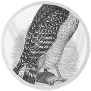Red-shouldered Hawk, 1890 Round Beach Towel