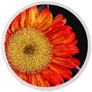 Red Sunflower II  Round Beach Towel
