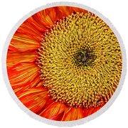 Red Sunflower Iv Round Beach Towel