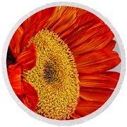 Red Sunflower V Round Beach Towel