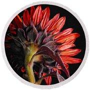 Red Sunflower X Round Beach Towel