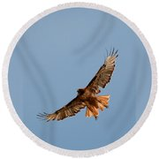 Red Tail Hawk 202-3 Round Beach Towel