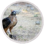 Red Tailed Hawk Catch Round Beach Towel