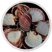 Red-toned Seashells Round Beach Towel